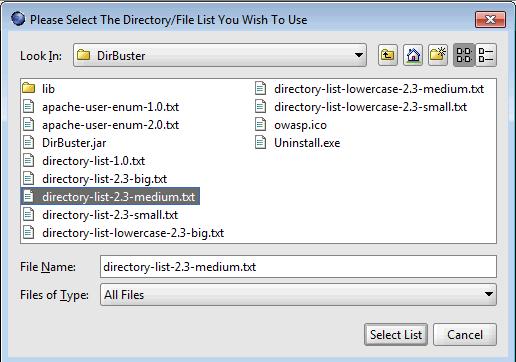 DirBuster -- Web Directory Enumeration   LockBoxx