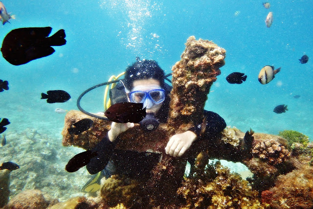 JustMom-Scuba-Diving-Scuba-Diving-Experince-Cross-Terence