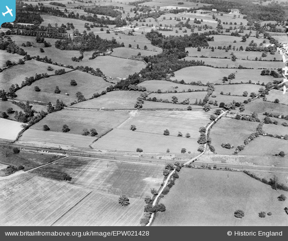 Photograph of Gobions Wood, Brookmans Park, 1928
