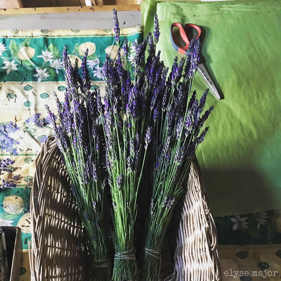 tinkered treasures: flower fangirl