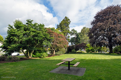 Picnic Grounds, Causland Memorial Park,  Anacortes, Washington
