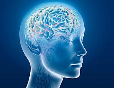 Testeaza-ti IQ-ul de Ziua Inteligentei