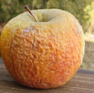 A wrinkled apple