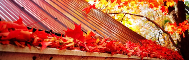gutters clogged by falling leaves
