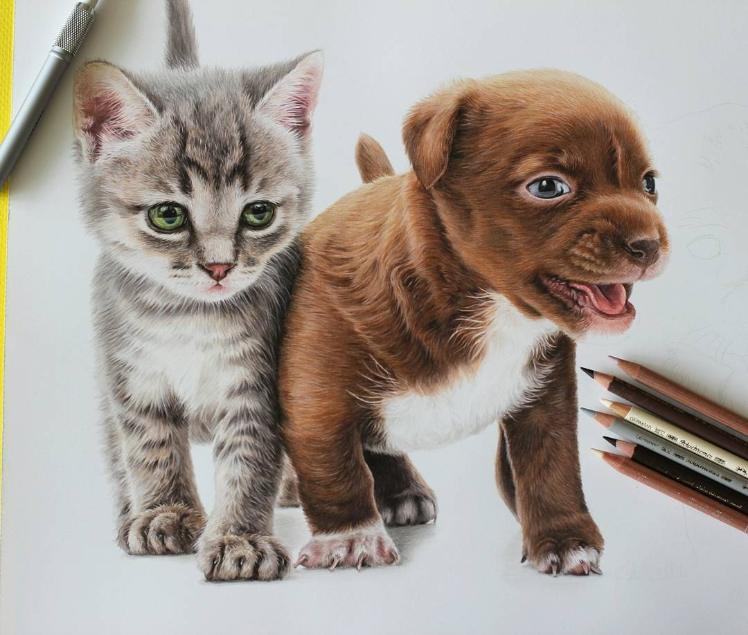 04-Puppie-and-Kitten-Jae-Kyung-Cute-Kittens-and-Puppies-Drawings-www-designstack-co