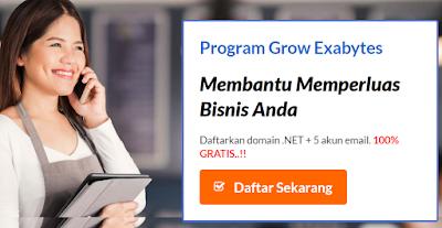 Domain Gratis .Net 2017