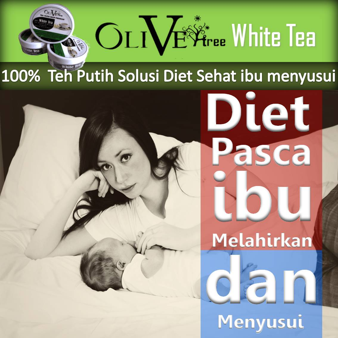 Pengertian Diet