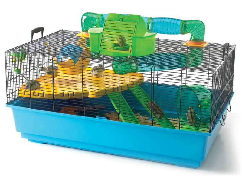 cara membuat kandang hamster agar lebih menyenangkan