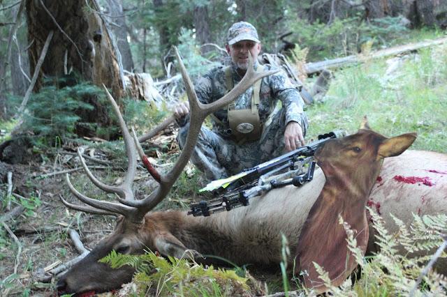arizona elk hunting