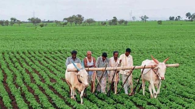 Method+of+Farming