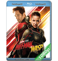 ANT-MAN AND THE WASP: EL HOMBRE HORMIGA Y LA AVISPA (2018) 1080P HD MKV ESPAÑOL LATINO