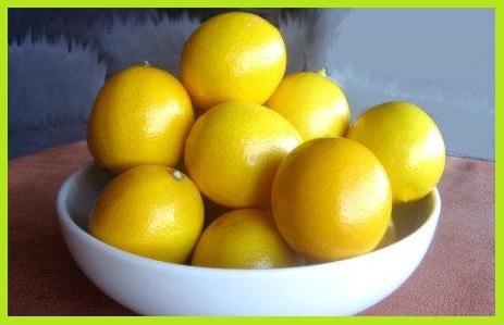 नींबू को प्रिजर्ब (स्टोर) करना - Preserved Lemons at Home