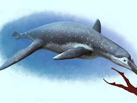 Luskhan itilensis: Ahli Paleontologi Telah Mengidentifikasi Spesies Pliosaurus Baru