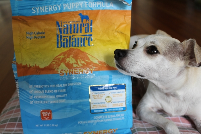Https Www Dogfoodadvisor Com Dog Food Reviews Purina Pro Plan Savor