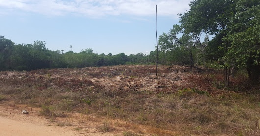 Sea View Lot for Sale in Placencia FOR SALE - USD $64,000.