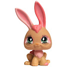 Littlest Pet Shop Seasonal Rabbit (#506) Pet