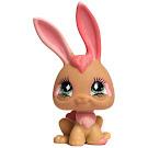 Littlest Pet Shop Seasonal Rabbit (#506) Pet