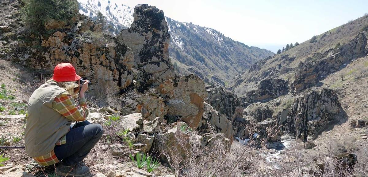 DSC02792 Panorama