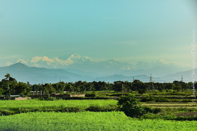Location: Belakoba, New Jalpaiguri, West Bengal, India. The whole range of Kanchenjunga standing as an upfront wall.  @DoiBedouin