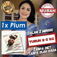 Optimax Plum Delite Promo Murah Banget - Optrimax Buah Plum Kering Diet Detox Kurus Langsing Herbal