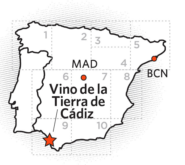 The World of Wine Review: Spain Unit 8