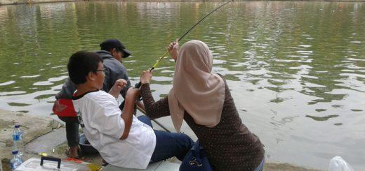 Informasi Untuk Semua Sahabat Pancing Resep Racikan Essen Galatama Ikan Mas
