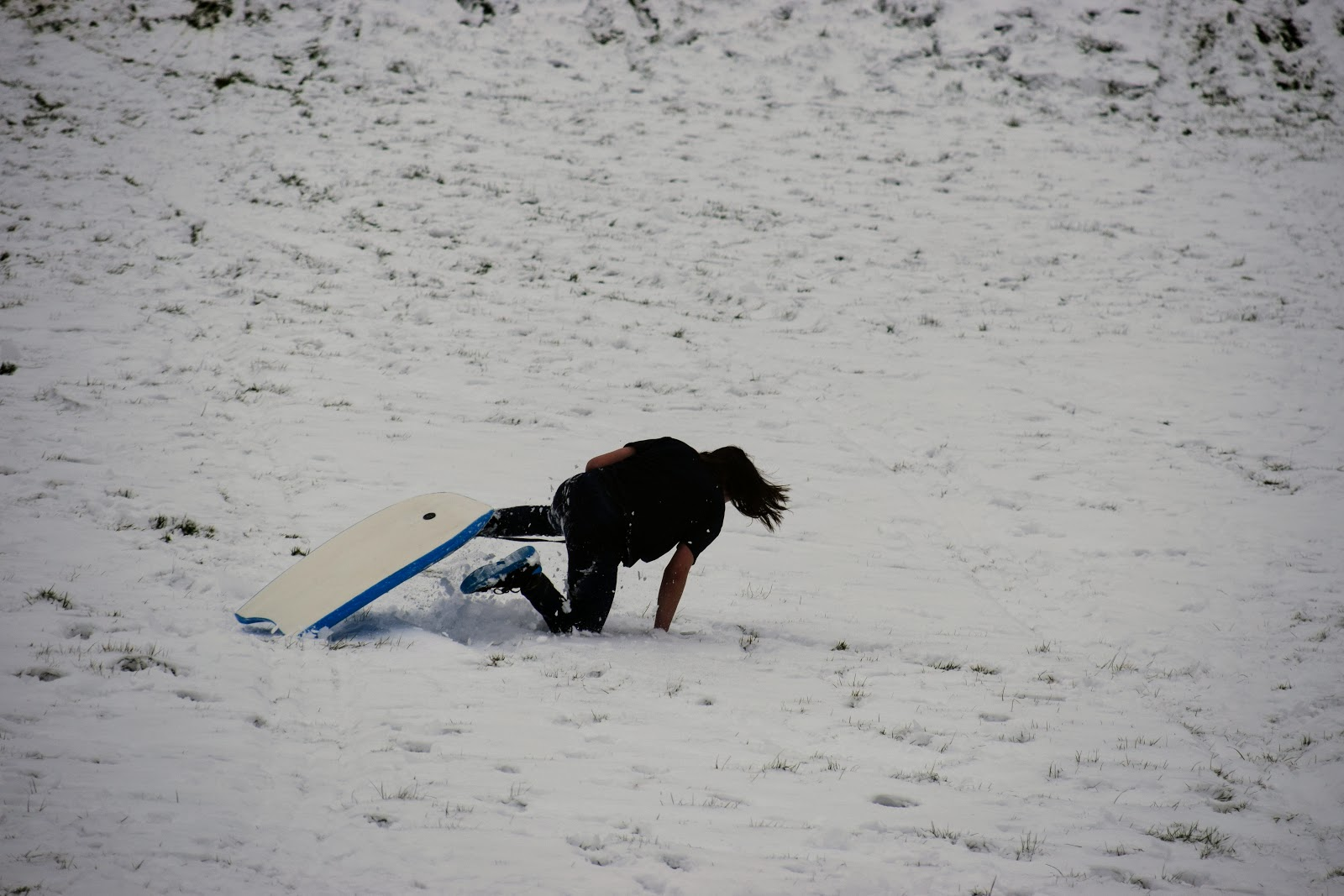 , St David's Day and Snow Days in Pembrokeshire