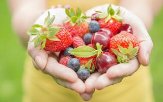 Jenis makanan sehat