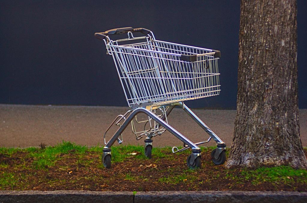 """Gedankenlos weggeworfen (4) – Der """"vergessene"""" Einkaufswagen"""
