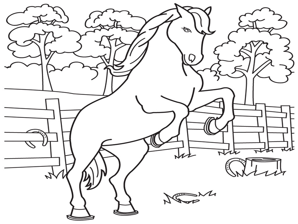Sketsa Gambar Binatang Untuk Diwarnai