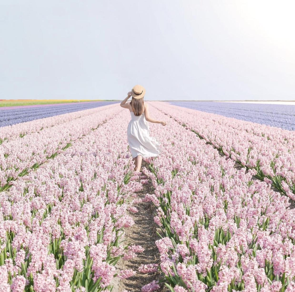 #colorsoloparami rosa por @cestmaria