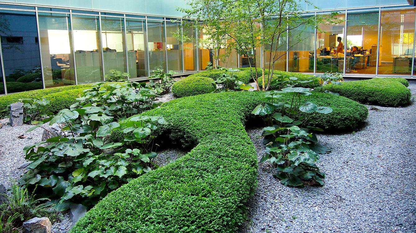 La casa por el jard n paisajistas urquijo kastner for Jardines pequenos para oficina