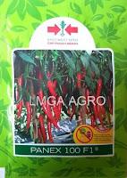 benih cabai merah besar, cabai panex, panex f1, panah merah, cabai panex 100 f1