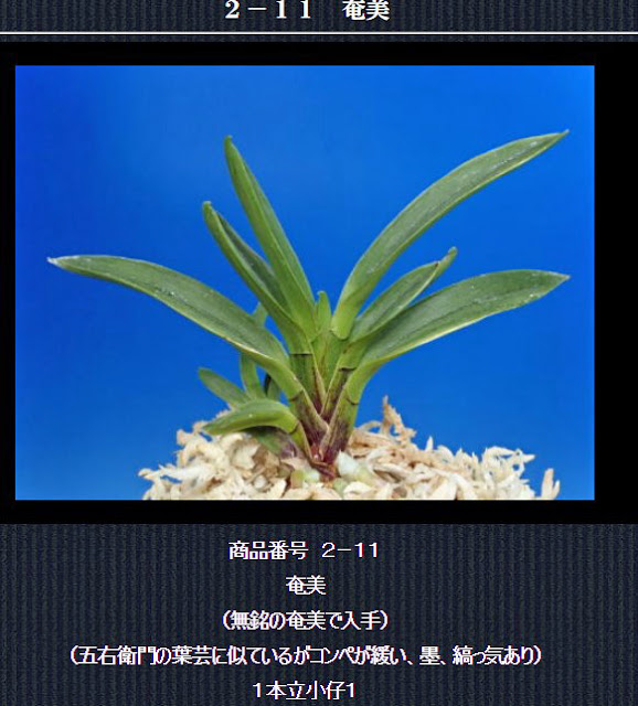 http://www.fuuran.jp/2-11.html