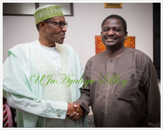 Those Demanding For President Buhari's Certificate Are Idle — Adesina