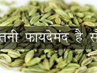 क्या आपको पता है सौंफ के औषधीय गुणों के बारे में,  Medicinal properties of fennel