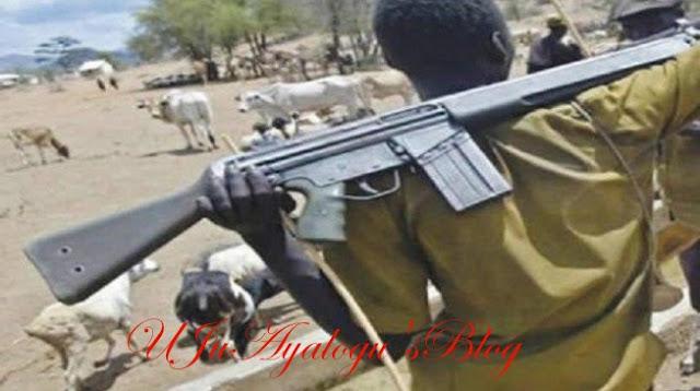 Ex-ambassador Hagher makes revelations about herdsmen-farmers' clash