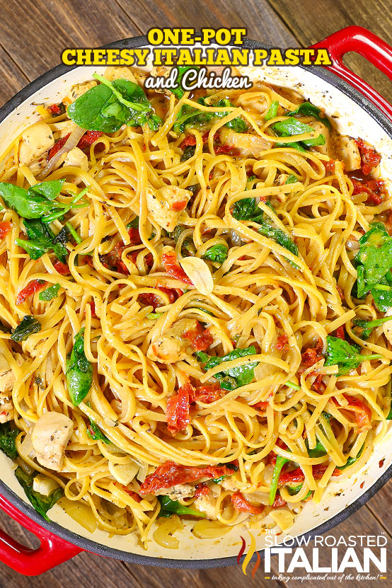 One pot cheesy italian pasta and chicken with video one pot cheese italian pasta and chicken is a rich and savory dish bursting with your favorite flavors this simple recipe features a creamy sun dried forumfinder