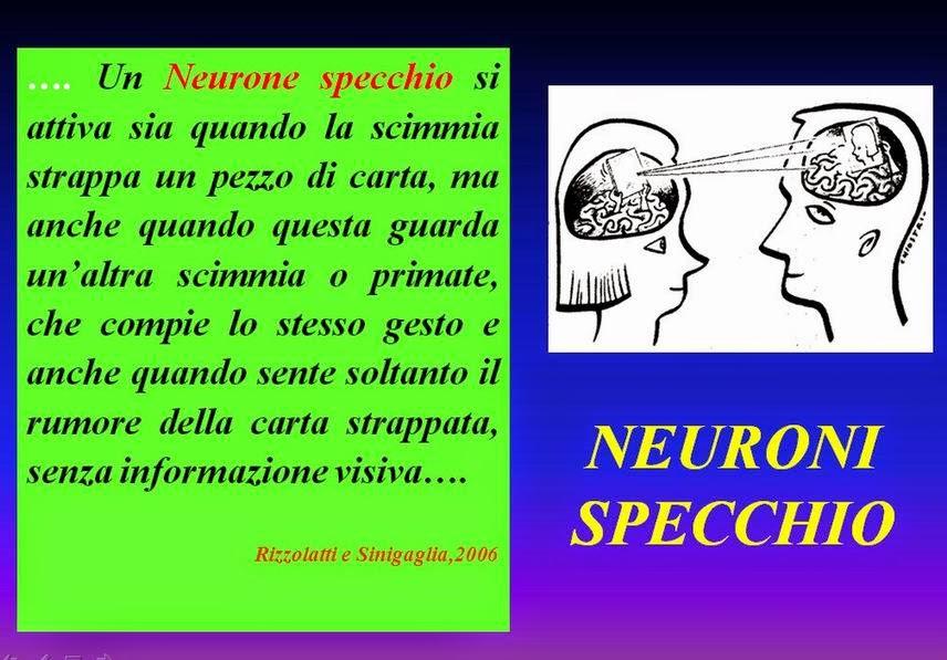 Didattica e cervello g rizzolatti i neuroni specchio e - Neuroni a specchio rizzolatti ...