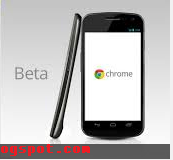 Google Chrome Free Download