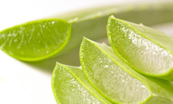 Como Quitar La Caspa Con Remedios Ayurvedicos y Aloe Vera