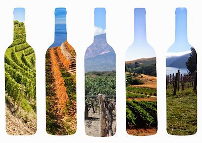 vino territorio