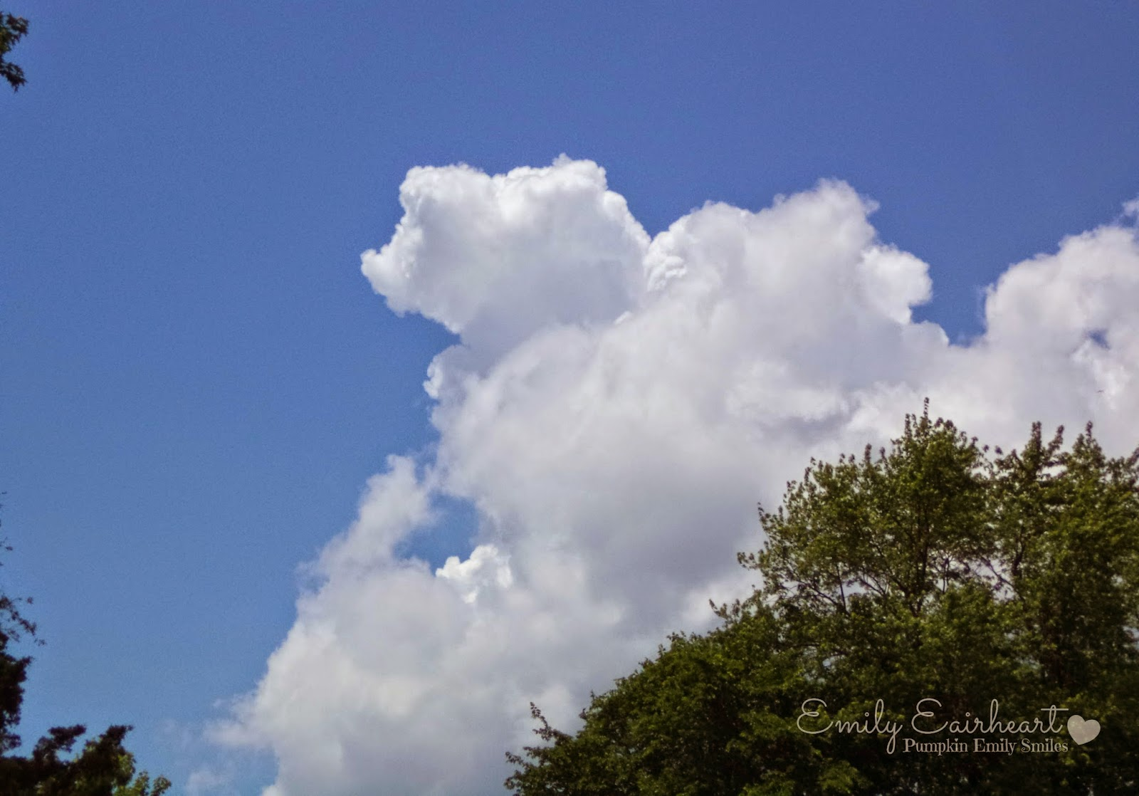 A cloud shape that looks like an animal.