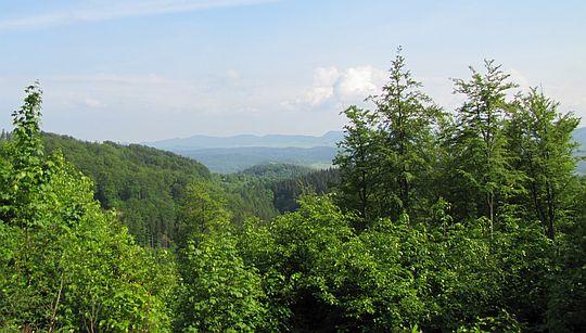 Widok na Góry Kamienne.