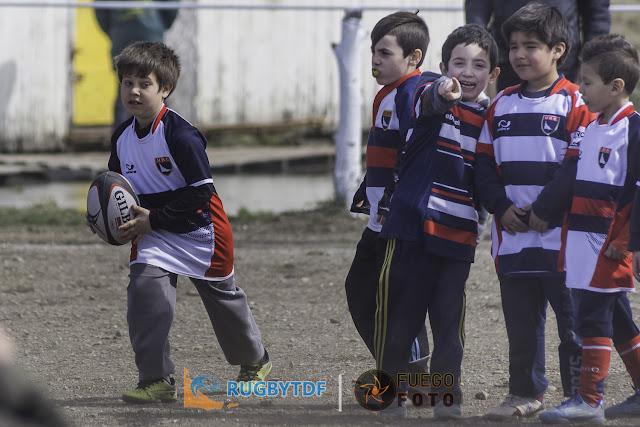 Sergio Abbate brindará charlas de rugby infantil y juvenil en la isla