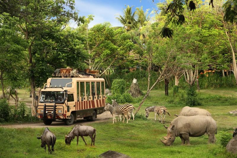Safari Adventure Package - Best Bali Zoo Park Package