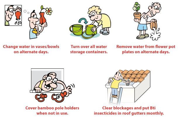 Dengue symptoms precautions and treatment