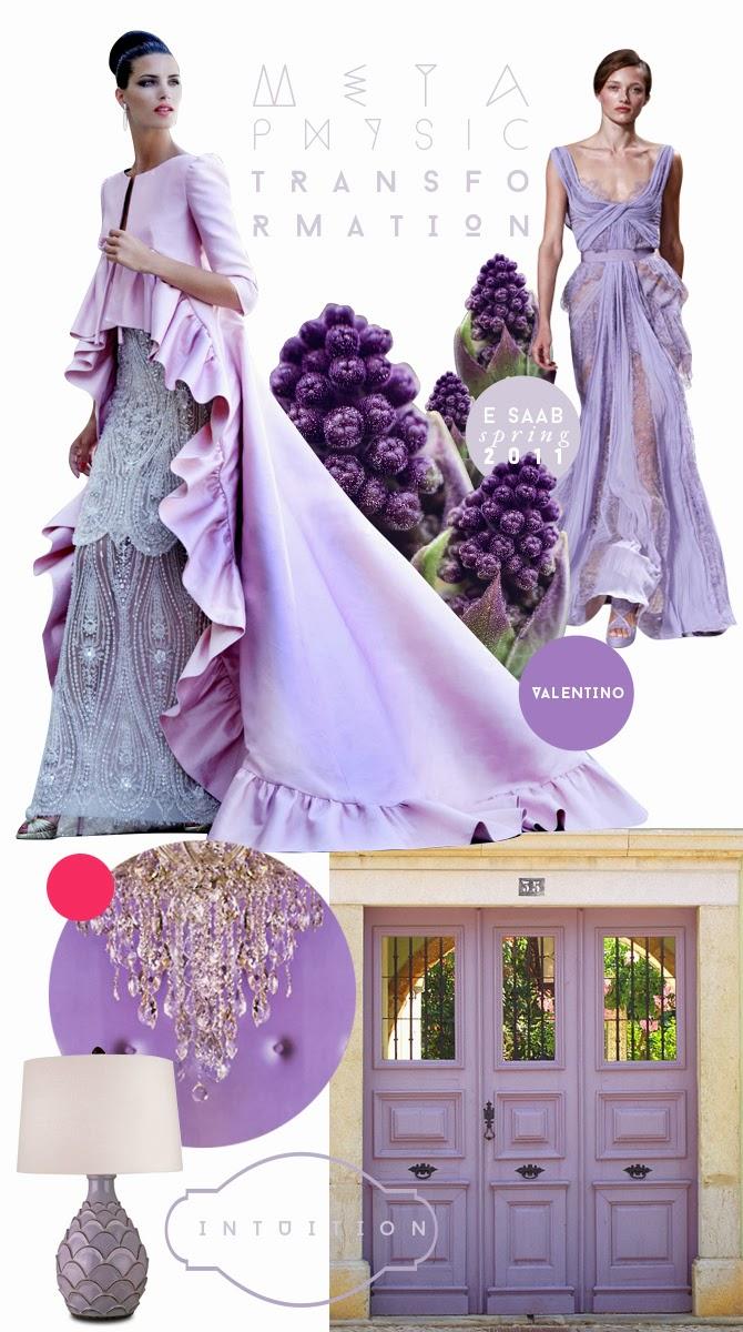 Orquidea Radiante Lilas blog de moda brasilia