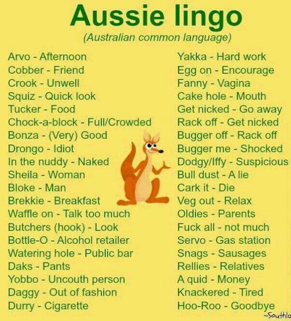 Funny Aussie Lingo Picture