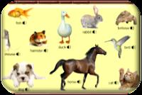 http://www.learningchocolate.com/en-gb/content/animals-3?st_lang=en